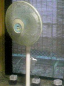 とうとう、エアコン生活