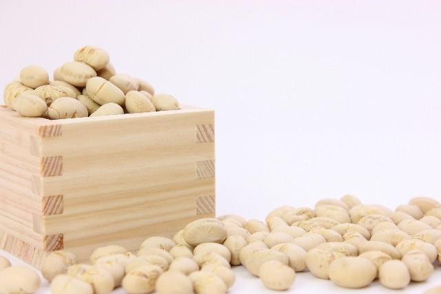 あの食材でバストアップが出来る?! 普段の生活に大豆製品を取り入れること