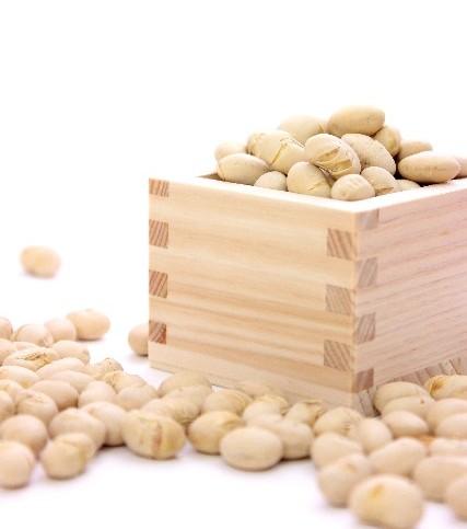 健康にもバストアップにも良い万能食材! 色々な大豆製品について