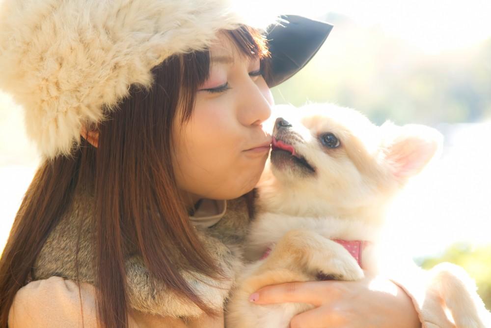 ペットを飼う事は離婚を回避する方法になる