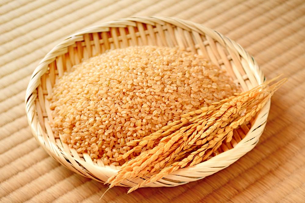 玄米を寄付するのは立派な社会貢献になります