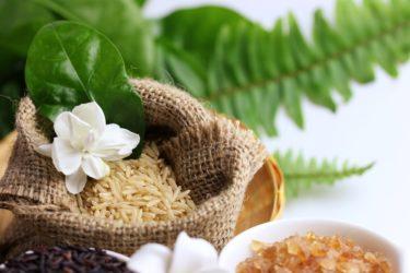 吉祥寺で玄米が食べれるおしゃれカフェ「シヴァカフェ」