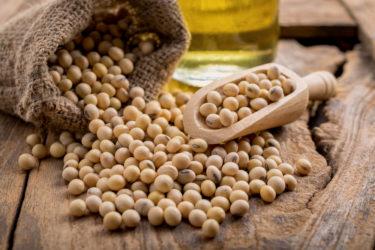血糖値を下げる豆、大豆について