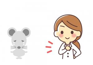 特殊な超音波ねずみ駆除器!「ネズミの引越しDX(アメリカ特許技術使用)」早期発見!早期駆除が鉄則!